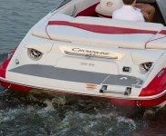 CROWNLINE 195 SS_8